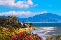 california-produto_3