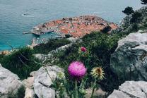 adriatico-2021_1